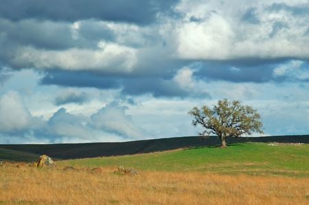 rural countryside on a spring afternoon Banco de Imagens
