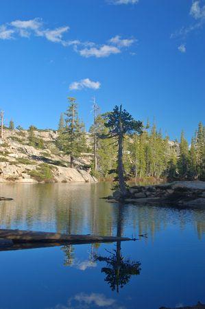montane: Northern Sierra Nevada mountain lake, in spring