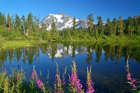 Mountain peak reflected in a lake with wildflowers in the foreground