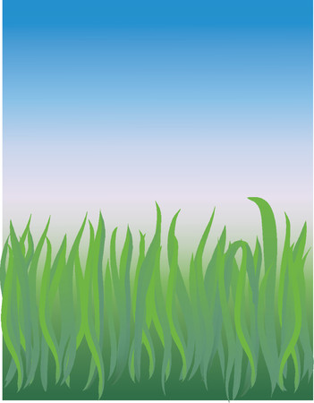 vector based illustration of a grassy field closeup