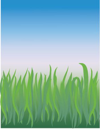 verdant: vector based illustration of a grassy field closeup
