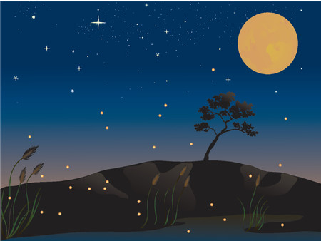 nights: fireflies and a full moon on a summer evening