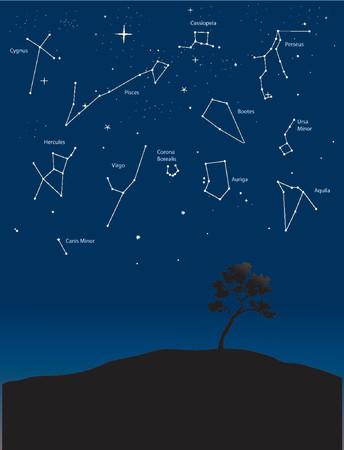 diverses constellations dans un ciel étoilé