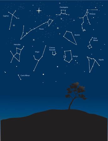 cygnus: various constellations in a starry night sky Illustration