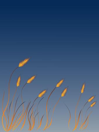 Roseau greass au vent Banque d'images - 1606510