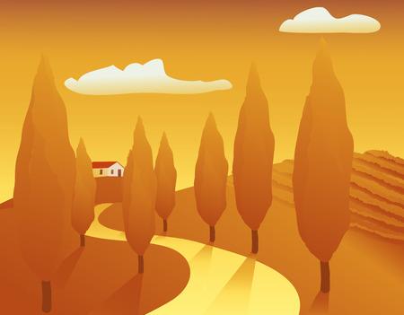 Illustration d'une après-midi d'été avec un paysage des vignes, jaune voie bordée d'arbres, etc  Banque d'images - 1606506
