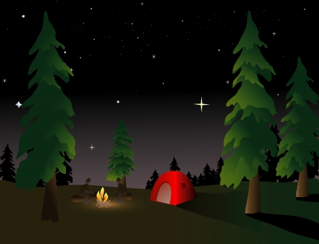 campfires: Camping in the wilderness under a summer night sky
