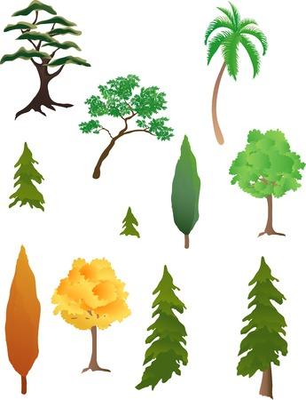 Diverse soorten bomen Stock Illustratie