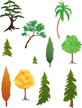 Vaus kinds of trees Stock Vector - 1676420