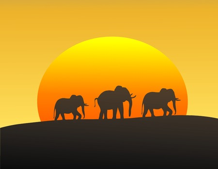 Vector illustration of elephants silhouetted against the setting sun Иллюстрация