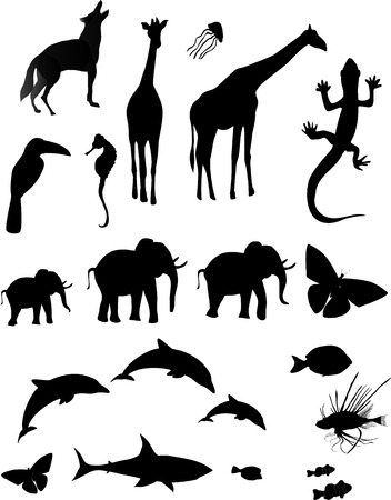 Silhouetted shapes of various animals Çizim
