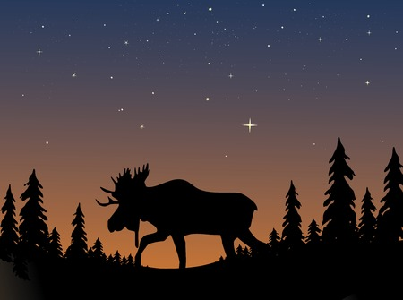Moose silhouetted against an evening twilight sky
