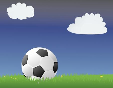 Voetbal  Voetbal in een groene gras begroeid terrein