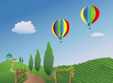 airborne: Balloons drifting over a vineyard in Napa