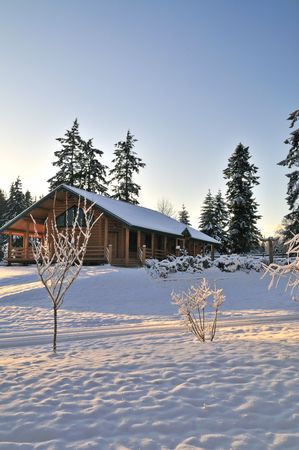 washington state: Snowy winter morning on the Olympic peninsula in Washington State