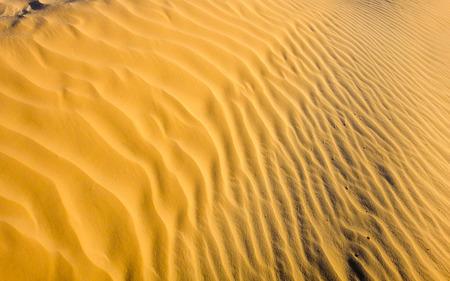 desierto del sahara: El desierto del Sahara textura