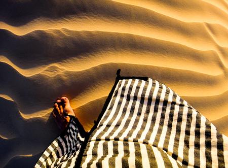 Sahara desert gold sunset