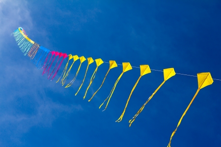 Kites in the sky photo