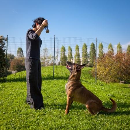 dog looks at his master