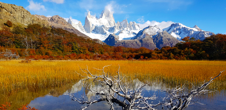 Trees with autumn colors and Mount Fitz Roy, Patagonia, Argentina