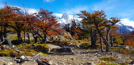 Patagonian autumn colors, trees with autumn colors, Laguna Capri, Argentina Imagens