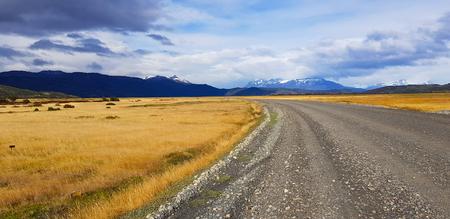 Landscape along a Patagonia road, Torres del Paine, Chile Imagens