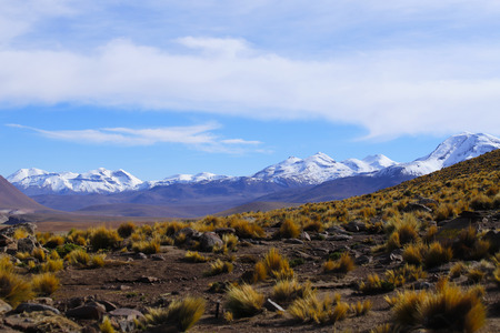 The landscape of northern Chile with the Andes Mountains and volcanoes with snow on the summit, Atacama Desert, Chile 写真素材