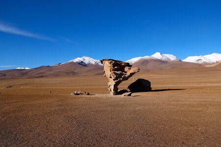 Arbol de Piedra (rock or stone tree) in the Siloli Desert. Snow-capped volcanoes and desert landscapes in the highlands of Bolivia. Andean landscapes of the Bolivia Plateau