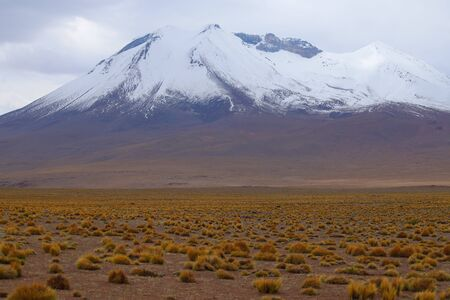 Snow-capped volcanoes and desert landscapes in the highlands of Bolivia. Andean landscapes of the Bolivia Plateau