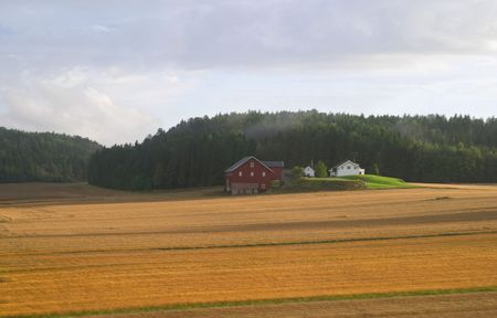 agrarian: Swedish agrarian landscape in the early autumn, countryside near Gothenburg, Sweden