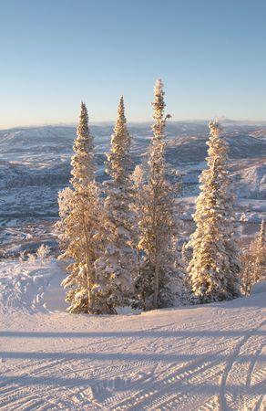 ski slopes: Piste di sci in inverno, Steamboat stazione sciistica, Colorado, Stati Uniti