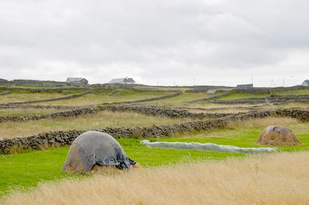 agrarian: Aran islands agrarian landscape, Ireland