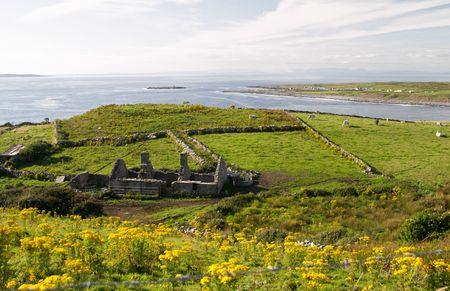 Irish green countryside Stock Photo - 519071
