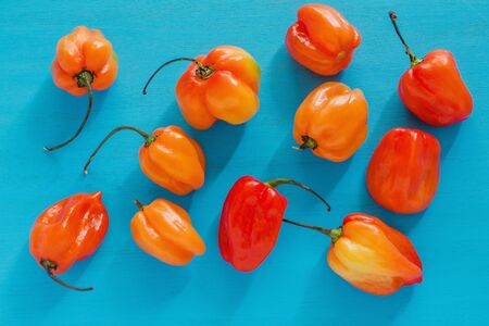 habanero, chiles habaneros, spicy ripe habanero hot chili peppers mexican food in mexico