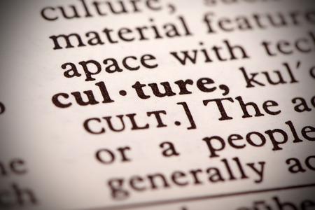 noun: Culture Definition