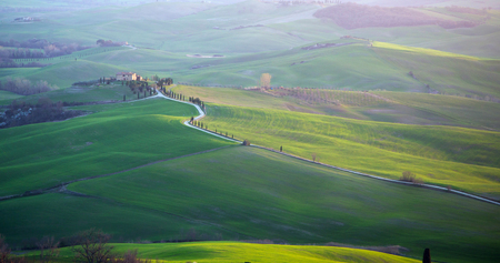 val d'orcia: Landscape in Val dOrcia in Tuscany, Italy