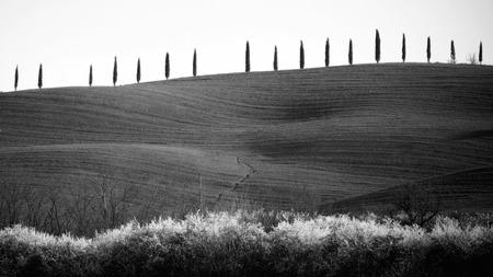 val dorcia: Landscape in Val dOrcia in Tuscany, Italy