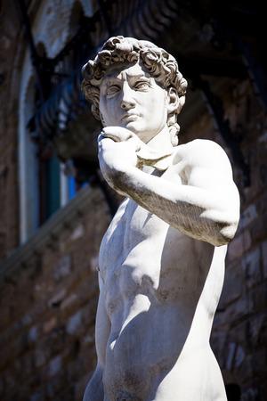 Copy of Michelangelos David in Piazza della Signoria, Florence, Italy
