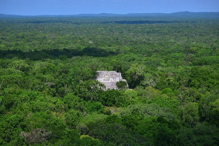 calakmul: Campeche, Mexico: Ruins of the ancient Mayan city of Calakmul surrounded by the jungle Editorial