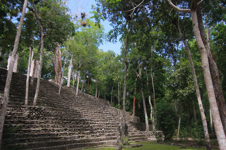 Campeche, Mexico: Ruins of the ancient Mayan city of Calakmul surrounded by the jungle Stock Photo