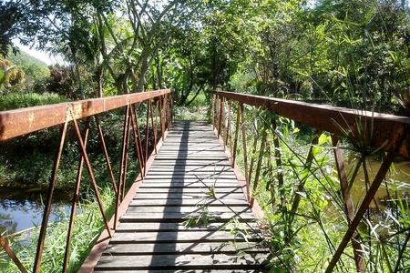 iron: Iron bridge in the lake