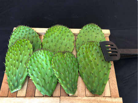 Typical vegetable of Mexico (nopal) 免版税图像