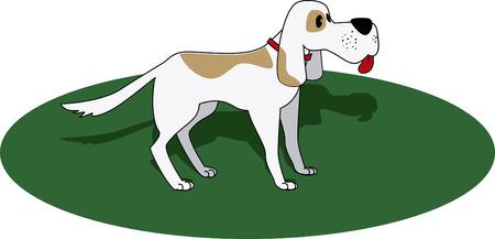 gram: dog under the gram