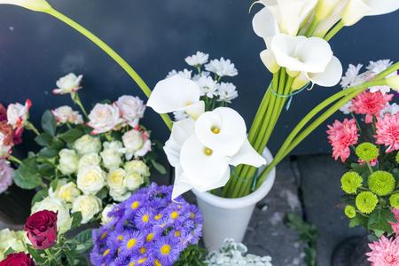 in full bloom: spring flowers.Blossoms in full bloom.