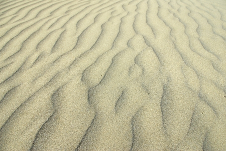 sand ripples in the dawn light; suggesting relax and meditation