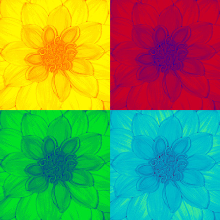 pop art dahlia,flower