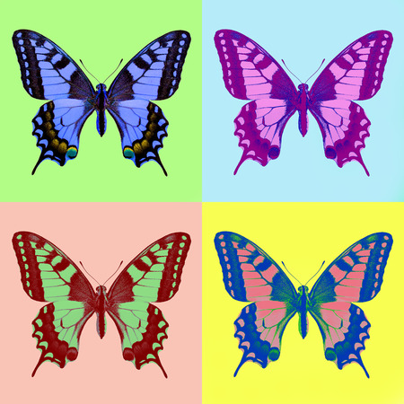 pop art swallowtail (Papilio machaon) Stock Photo