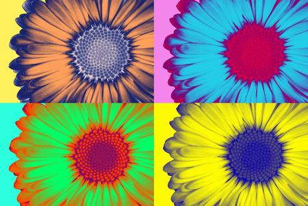 flower clip art: Abstract daisie in pop-art style