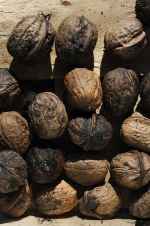 Group of organic walnuts Stock Photo - 7728262