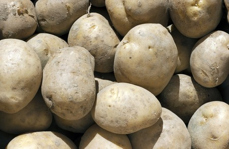 Fresh Potatoes Background  Stock Photo - 7926777